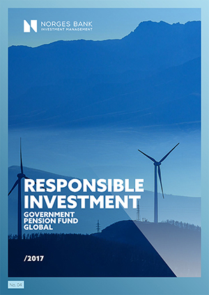 Responsible investment 2017